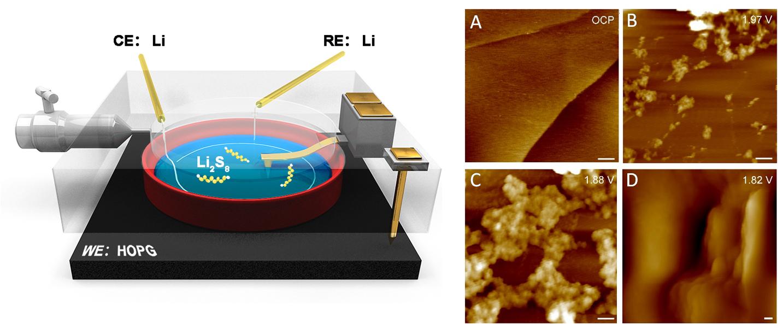 AFM应用:锂电池界面电化学过程的原位研究