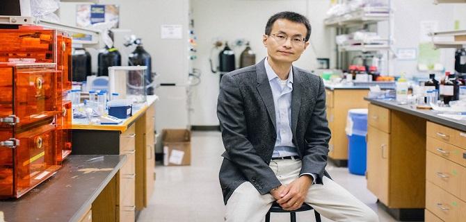 有证书的天才:杨培东教授